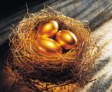 The morning sunshine enters your room. As you wake up to the lovely singing of birds, you see a small nest has been built just outside your window. 